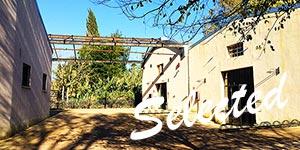 La-festa-dei-Musei-della-Natura---ex-Cartiera-Latina---via-Appia-Antica-03