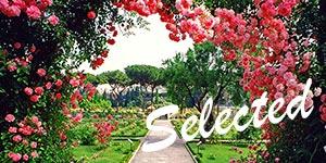 Roseto-comunale-–-via-di-Valle-Murcia-–-Aventino