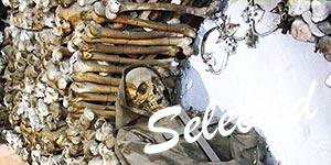 cripta-ossario-museo-frati-cappuccini-roma-03