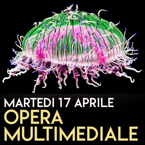 opera-multimediale-auditorium-roma-weekend-show